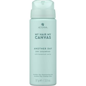Alterna MHMC Another Day Dry Shampoo