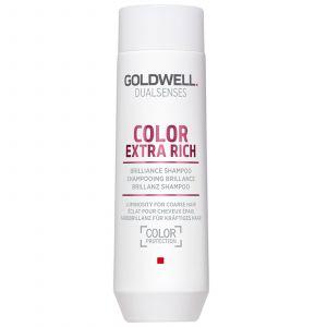 Goldwell DS Extra Riche Brilliance Shampoo 2017
