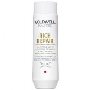 Goldwell DS Rich Repair Restoring Shampoo 2017